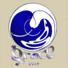 Grace Surfboard